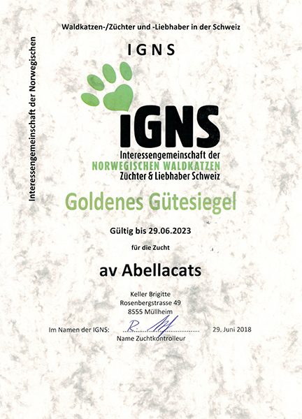 avabellacats_igns_klein